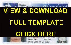 Make Bigismash Online Fake Free License Drivers - A