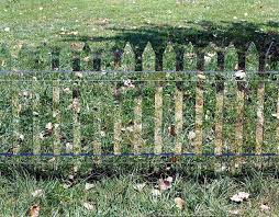 invisible fences New land Pinterest Invisible Fence