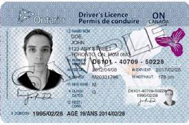A Services To Canadian Head – Driving Immigration Canada License Get