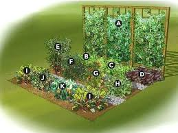 best garden vegetables. How To Grow The Best Garden Vegetables Small Vegetable Gardens Ideas On Veg L