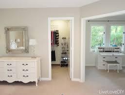 Master Bedroom Closet Organization Closets Ideas For Small Es Bathroom Small Closet Organization