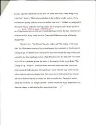 the five paragraph essay emily scherer s teaching portfolio analytical comparison essay page 3