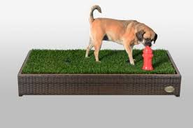 artificial grass for pets. Get Quotations · Porch Potty Premium: First Automated Grass Litter Box For Dogs Artificial Pets N