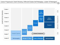 Career Progression Chart Showing Different Grades Self