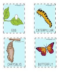 Free Butterfly Printables For Preschool Preschool