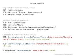 Dupont Analysis Double Entry Bookkeeping