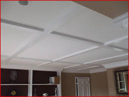 Basement drop ceiling tiles Paint Basement Drop Ceiling Tiles 116856 Drop Ceiling Tiles Basement Basement Pinterest Wordupmagcom Basement Drop Ceiling Tiles 116856 Drop Ceiling Tiles Basement