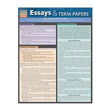 university of minnesota bookstore essays term papers