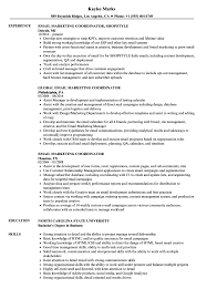 Email Marketing Resume Sample Email Marketing Coordinator Resume Samples Velvet Jobs 15