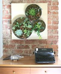 succulents wall decor diy diy vertical succulent garden ehows ikea lack on remarkably easy ideas