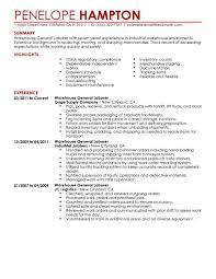 Resume Example Warehouse Worker Skills On Sample Logistics