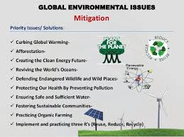 global environmental crisis essay
