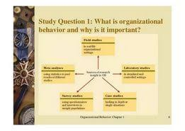 organizational behavior essay topics  organizational behavior essay topics