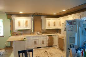 spray paint kitchen cabinetsSpray Painting Kitchen Cabinets  remeslainfo