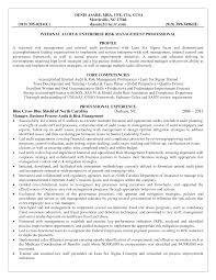 risk manager resume