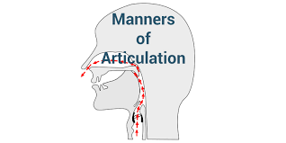 Manners Of Articulation The Complete List With Examples