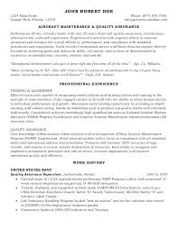 Federal Government Resume Examples Magnificent Simple Resume Maker Llun