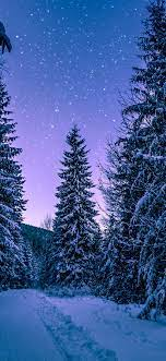 Winter Background Wallpaper - NawPic