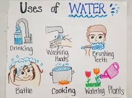 Uses Of Water 1st Grade Teks Anchor Chart Save Water