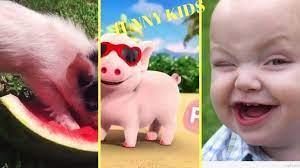 con heo đất remix -Funny Kids-nhạc thiếu nhi MP3 2019 | Kho nhạc thiếu nhi  hay nhất. - Kênh nhạc ru ngủ, nhạc thư giãn lớn nhất Việt Nam