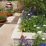 Image result for wall gardening ideas