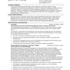 Resume Services Examples Of Resumes Resume Professional Summary Customer Service 64