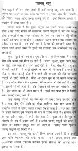 essay on love in hindi annotated bibliography custom writing  essay on information and