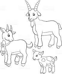 Small Picture Coloring Pages Farm Animals Goat Family stock vector art 564563582