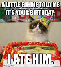 grumpy cat birthday bird. Wonderful Cat A Little Birdie Told Me Itu0027s Your Birthday I Ate Him Throughout Grumpy Cat Birthday Bird A