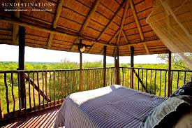 A Night Less Ordinary  Tree House Hotels  Purple TravelTreehouse Hotel Africa