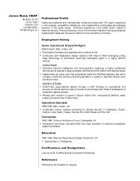 Sample Resumes For Business Analyst Business Analyst Resume Sample James Bond
