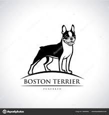 Boston Terrier Dog Logo Vector ...