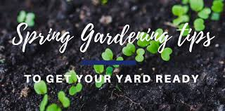 it s time to get outside and enjoy this south ina spring weather spring is a great time to look at opportunities like mcguinn homes communities and