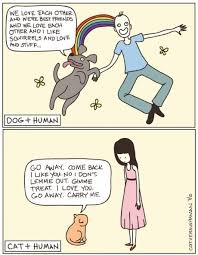 just a few hilarious differences between cats and dogs catsndogs