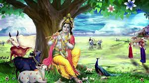 Krishna With Cow Hd Images