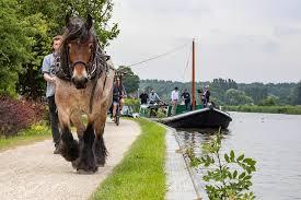 Intercity van de Gouden Eeuw | Delft | AD.nl
