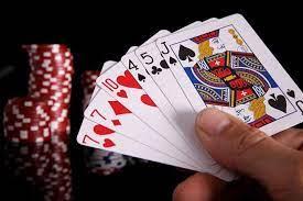 Agen Domino Online | Poker Online TenStringSandaGoatskin