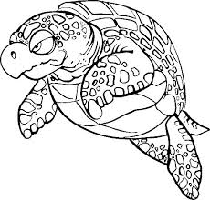 Small Picture Coloring Page Tortoise animal coloring pages 1