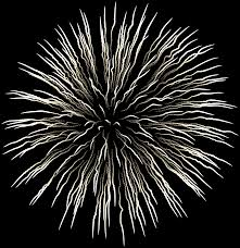 fireworks clipart black and white transparent. Unique White Firework White Transparent Clip Art Is Available For Free Download  View Full Size  With Fireworks Clipart Black And A