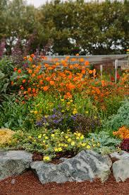 Small Picture Garden Design Magazine Spring 2017 Eye of the Day Garden Design