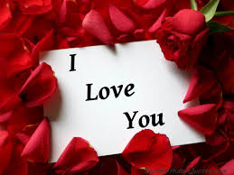 Download Love You Wallpaper Download Red Rose With