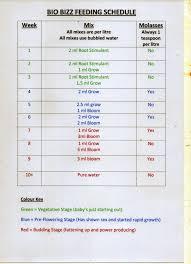 45 Unique Biobizz Schedule