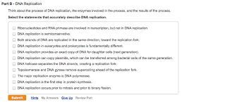 Solved Think About The Process Of Dna Replication The En