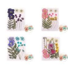 UV Resin <b>Dried Flowers</b>