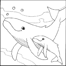 Hellokids has selected lovely coloring sheets for you. Printable Sea Creatures Coloring Home