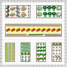Small Picture Attractive Perfect Vegetable Garden Layout Free Vegetable Garden