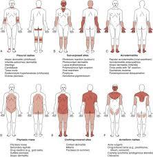 Skin Examination Oxford Medical Education