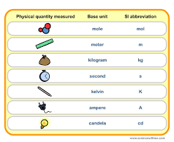 Learn About S I Units
