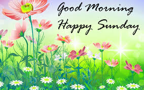 Top Good Morning Sunday Wishes Quotes Images Status Shayari