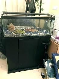 20 gallon fish tank stand gal long aquarium stand gallon fish tank led plant light pet
